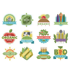 fresh healthy organic vegan food logo nature vector image vector image