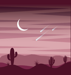 Landscape sunset desert cactus sky moon and fall vector