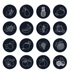 Line icons of tropical fruits and berries vector