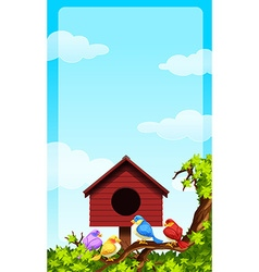 Little birds and bird house vector