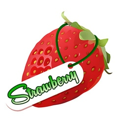 Font design with fresh strawberry and word vector