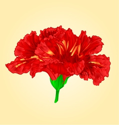 Flower red hibiscus blossom simple tropics flower vector