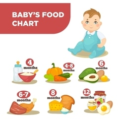 Healthy food for babies in different age vector image