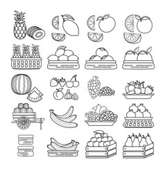 set of cute fruit icon isolated on whi vector image vector image