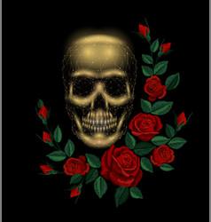 vintage human skull bone flower red rose vector image