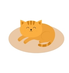 Cute orange cat lying sleeping on oval carpet rug vector image vector image