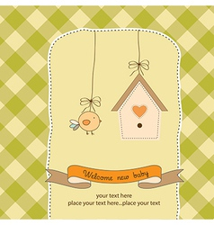 new baby announcement card with chicken vector image
