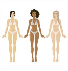 three beautiful women vector image