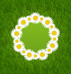 Spring freshness card with grass and camomiles vector
