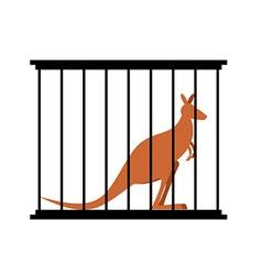 Kangaroo in cage Animal in Zoo behind bars vector image