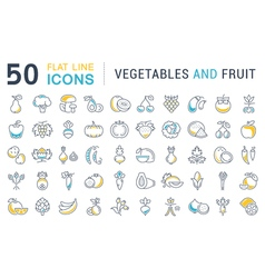 Set flat line icons vegetables and fruit vector