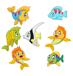 Cartoon fish collection set isolated vector