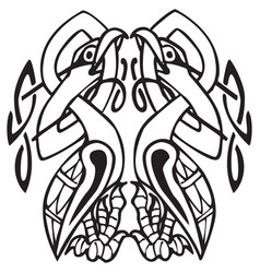Celtic design with knotted lines of two birds vector