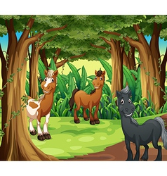 A forest with three smiling horses vector