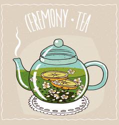 Glass teapot with tea with jasmine vector