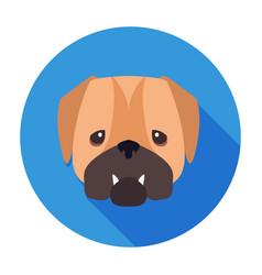 wailful muzzle of english bulldog drawn art icon vector image