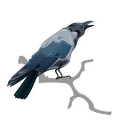 Grey crow vector image