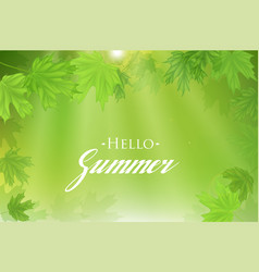 Summer fresh green leaves with sun rays vector