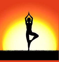 yoga vricshasana pose black silhouette on sunset vector image