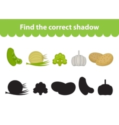 Children s educational game find correct shadow vector image