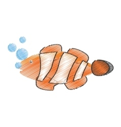 Hand drawing clown fish coral anemone reef bubbles vector
