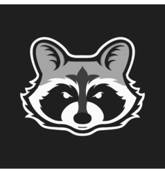 Raccoons head logo for sport club or team animal vector
