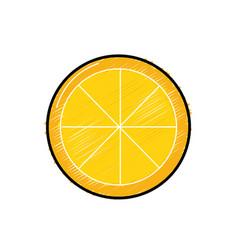 Tasty lemon slice organic fruit vector