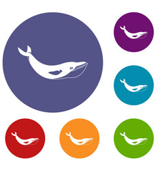 Whale icons set vector