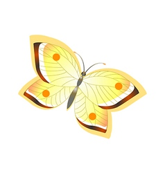 Icon butterfly vector
