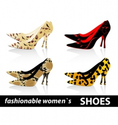 women's shoes vector image