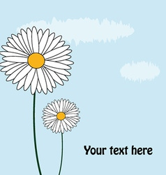 Daisy card vector
