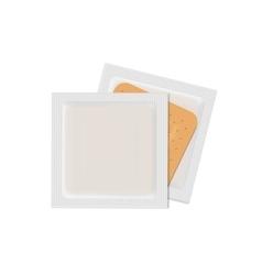 Bandage Plaster Aid Band Medical Adhesive vector image