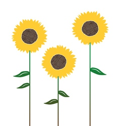 Floral background with sunflower vector