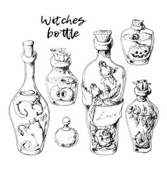 Isolated magic bottle jars set with liquid potions vector