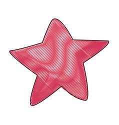Drawn starfish tropical wildlife marine vector