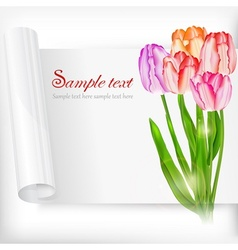 Sheet of paper and tulips on vector image