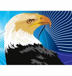 Eagle graphic vector