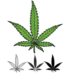 Hemp leaf vector