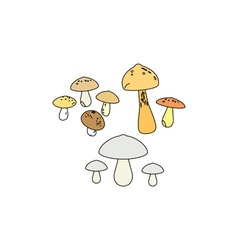 Mushrooms-380x400 vector image vector image