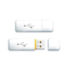 Usb flash drive on white background vector