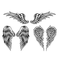 Wings set4 vector