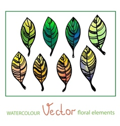 Set of watercolor stylized leaves vector image