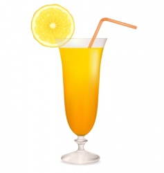 Coctail orange vector