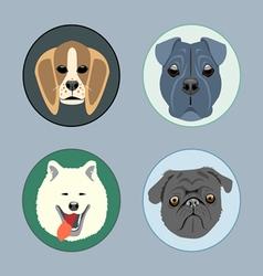 Dogs set flat style husky rottweiler taxa victoria vector