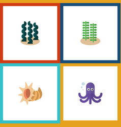 Flat icon sea set of alga tentacle seashell and vector