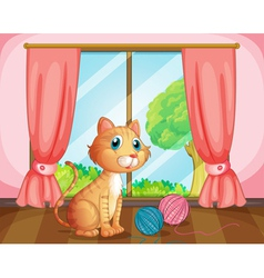 A cat near the window vector image