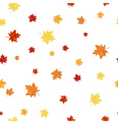Seamless maple pattern vector