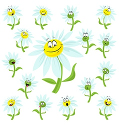 flower cartoon vector image