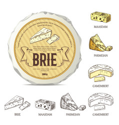 creative sticker for brie on round cheese mockup vector image