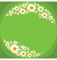 Floral frame with white chamomiles on green vector